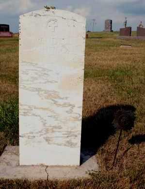 JOHNSON, WENDELL - Cedar County, Nebraska | WENDELL JOHNSON - Nebraska Gravestone Photos