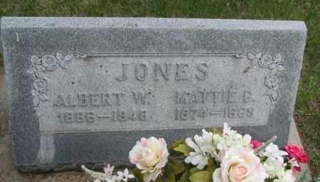 JONES, ALBERT W. - Cedar County, Nebraska | ALBERT W. JONES - Nebraska Gravestone Photos