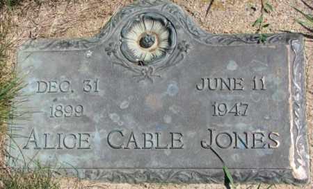 JONES, ALICE - Cedar County, Nebraska | ALICE JONES - Nebraska Gravestone Photos
