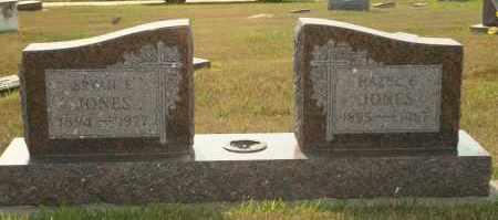 JONES, BRYAN E - Cedar County, Nebraska | BRYAN E JONES - Nebraska Gravestone Photos