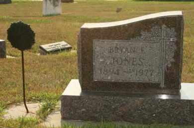 JONES, BRYAN E - Cedar County, Nebraska   BRYAN E JONES - Nebraska Gravestone Photos
