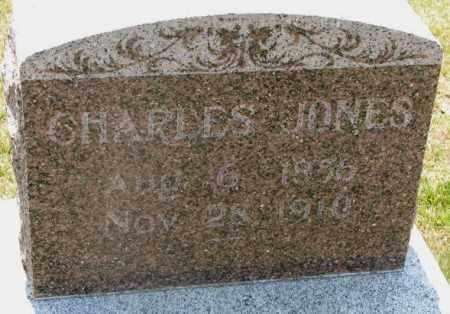JONES, CHARLES - Cedar County, Nebraska | CHARLES JONES - Nebraska Gravestone Photos