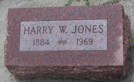 JONES, HARRY W. - Cedar County, Nebraska | HARRY W. JONES - Nebraska Gravestone Photos