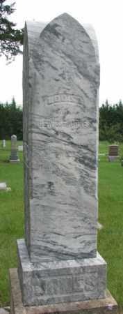 JONES, LOUISA (1 OF 2) - Cedar County, Nebraska | LOUISA (1 OF 2) JONES - Nebraska Gravestone Photos