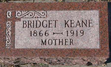 KEANE, BRIDGET - Cedar County, Nebraska | BRIDGET KEANE - Nebraska Gravestone Photos