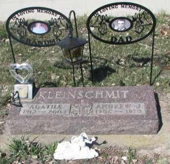 KLEINSCHMIT, ANDREW J. - Cedar County, Nebraska | ANDREW J. KLEINSCHMIT - Nebraska Gravestone Photos
