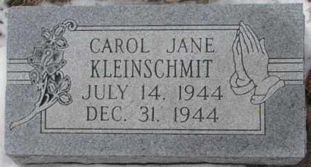 KLEINSCHMIT, CAROL JANE - Cedar County, Nebraska | CAROL JANE KLEINSCHMIT - Nebraska Gravestone Photos
