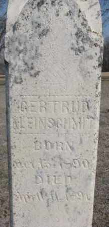 KLEINSCHMIT, GERTRUDE (CLOSEUP) - Cedar County, Nebraska | GERTRUDE (CLOSEUP) KLEINSCHMIT - Nebraska Gravestone Photos