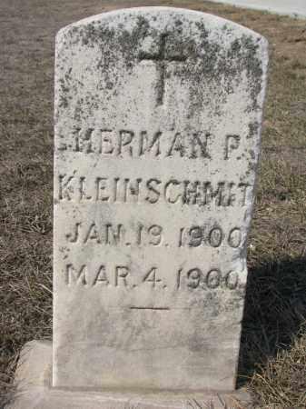 KLEINSCHMIT, HERMAN P. - Cedar County, Nebraska | HERMAN P. KLEINSCHMIT - Nebraska Gravestone Photos
