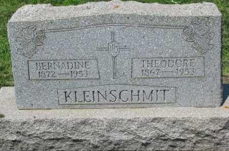 KLEINSCHMIT, THEODORE - Cedar County, Nebraska | THEODORE KLEINSCHMIT - Nebraska Gravestone Photos
