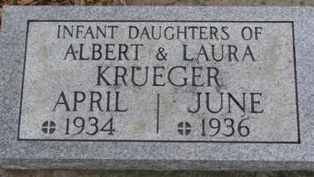 KRUEGER, APRIL - Cedar County, Nebraska | APRIL KRUEGER - Nebraska Gravestone Photos