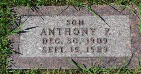 LAMMERS, ANTHONY P. - Cedar County, Nebraska   ANTHONY P. LAMMERS - Nebraska Gravestone Photos