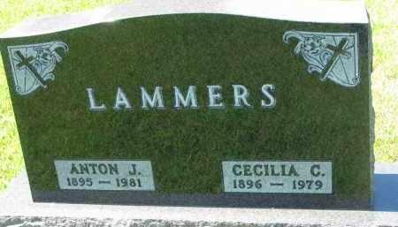 LAMMERS, ANTON J. - Cedar County, Nebraska | ANTON J. LAMMERS - Nebraska Gravestone Photos