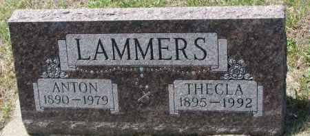 LAMMERS, THECLA - Cedar County, Nebraska | THECLA LAMMERS - Nebraska Gravestone Photos