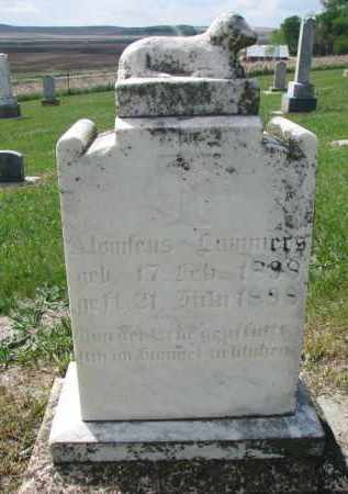 LAMMERS, ALONIFEUS - Cedar County, Nebraska | ALONIFEUS LAMMERS - Nebraska Gravestone Photos