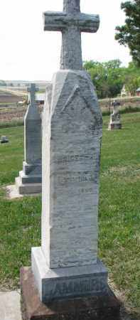 LAMMERS, BRIGETTA - Cedar County, Nebraska | BRIGETTA LAMMERS - Nebraska Gravestone Photos