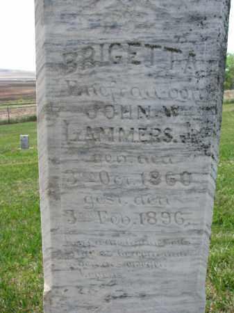 LAMMERS, BRIGETTA (CLOSEUP) - Cedar County, Nebraska | BRIGETTA (CLOSEUP) LAMMERS - Nebraska Gravestone Photos