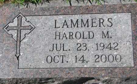 LAMMERS, HAROLD M. - Cedar County, Nebraska | HAROLD M. LAMMERS - Nebraska Gravestone Photos