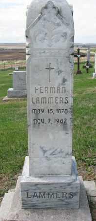 LAMMERS, HERMAN - Cedar County, Nebraska | HERMAN LAMMERS - Nebraska Gravestone Photos