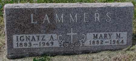 LAMMERS, MARY MATILDA - Cedar County, Nebraska | MARY MATILDA LAMMERS - Nebraska Gravestone Photos
