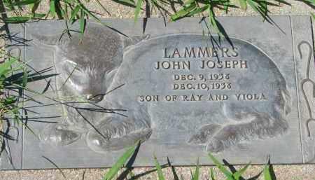 LAMMERS, JOHN JOSEPH - Cedar County, Nebraska | JOHN JOSEPH LAMMERS - Nebraska Gravestone Photos