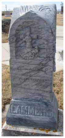 LAMMERS, KATE - Cedar County, Nebraska | KATE LAMMERS - Nebraska Gravestone Photos