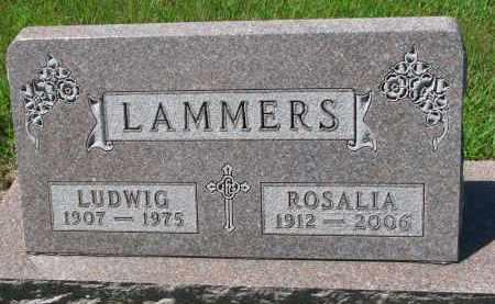LAMMERS, ROSALIA - Cedar County, Nebraska | ROSALIA LAMMERS - Nebraska Gravestone Photos