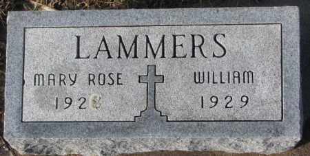 LAMMERS, WILLIAM - Cedar County, Nebraska | WILLIAM LAMMERS - Nebraska Gravestone Photos