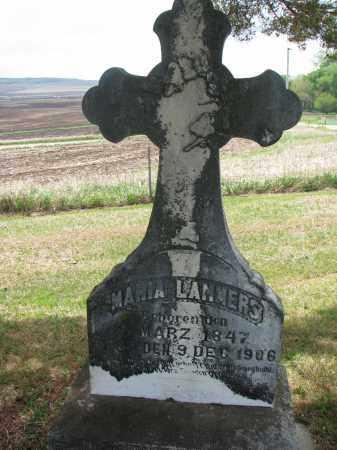LAMMERS, MARIA - Cedar County, Nebraska | MARIA LAMMERS - Nebraska Gravestone Photos