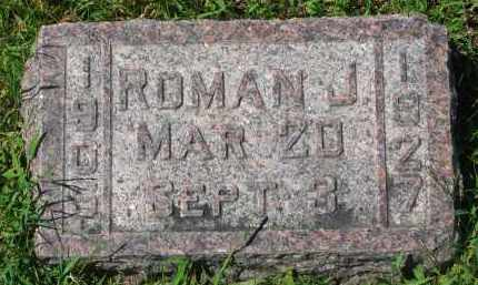 LAMMERS, ROMAN J. - Cedar County, Nebraska | ROMAN J. LAMMERS - Nebraska Gravestone Photos