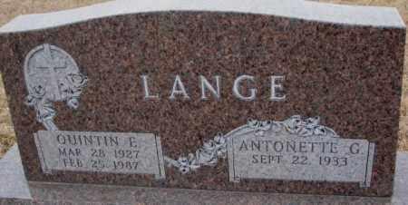 LANGE, ANTONETTE G. - Cedar County, Nebraska | ANTONETTE G. LANGE - Nebraska Gravestone Photos