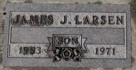 LARSEN, JAMES J. - Cedar County, Nebraska | JAMES J. LARSEN - Nebraska Gravestone Photos