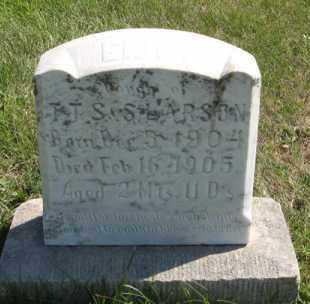 LARSON, EMILY - Cedar County, Nebraska   EMILY LARSON - Nebraska Gravestone Photos