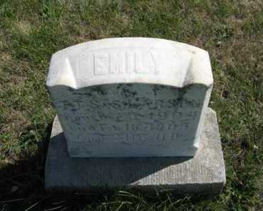 LARSON, EMILY (TOP OF STONE) - Cedar County, Nebraska | EMILY (TOP OF STONE) LARSON - Nebraska Gravestone Photos