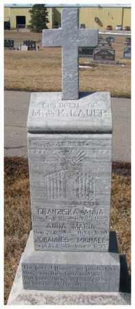 LAUER, JOHANNES MICHAEL - Cedar County, Nebraska | JOHANNES MICHAEL LAUER - Nebraska Gravestone Photos