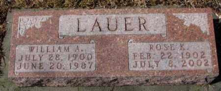 LAUER, WILLIAM A. - Cedar County, Nebraska | WILLIAM A. LAUER - Nebraska Gravestone Photos