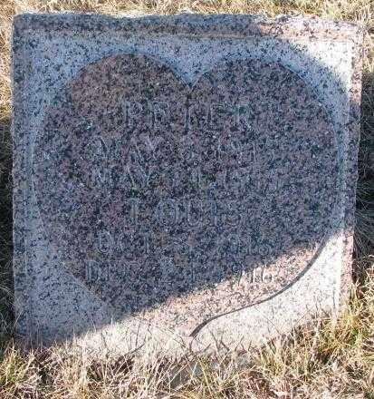LENZEN, LOUIS - Cedar County, Nebraska | LOUIS LENZEN - Nebraska Gravestone Photos