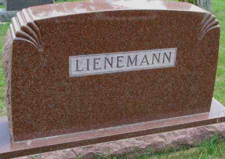 LIENEMANN, PLOT - Cedar County, Nebraska | PLOT LIENEMANN - Nebraska Gravestone Photos