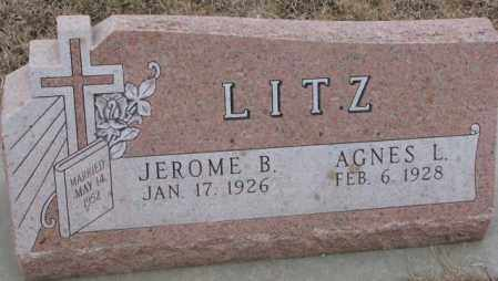 LITZ, AGNES L. - Cedar County, Nebraska | AGNES L. LITZ - Nebraska Gravestone Photos