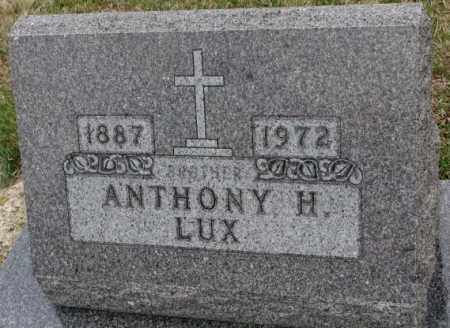 LUX, ANTHONY H. - Cedar County, Nebraska | ANTHONY H. LUX - Nebraska Gravestone Photos