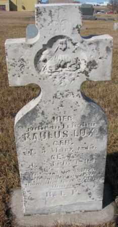 LUX, PAULUS - Cedar County, Nebraska | PAULUS LUX - Nebraska Gravestone Photos