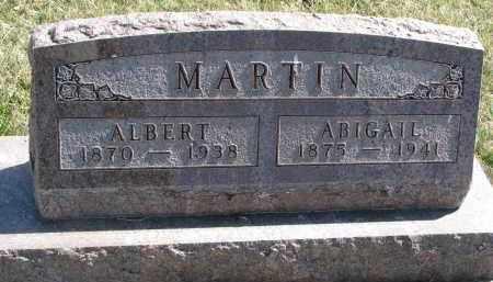 MARTIN, ALBERT - Cedar County, Nebraska | ALBERT MARTIN - Nebraska Gravestone Photos