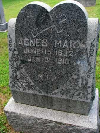 MARX, AGNES - Cedar County, Nebraska | AGNES MARX - Nebraska Gravestone Photos