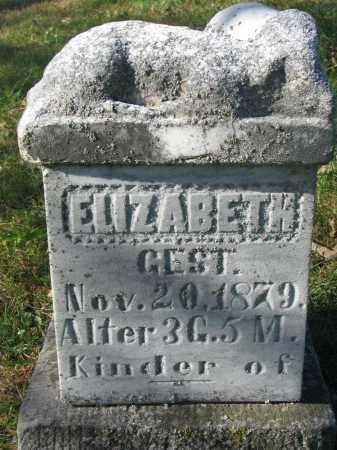 MARX, ELIZABETH - Cedar County, Nebraska | ELIZABETH MARX - Nebraska Gravestone Photos
