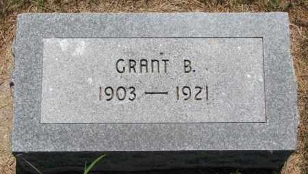 MAYDEN, GRANT B. - Cedar County, Nebraska | GRANT B. MAYDEN - Nebraska Gravestone Photos