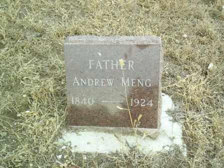 MENG, ANDREW - Cedar County, Nebraska | ANDREW MENG - Nebraska Gravestone Photos