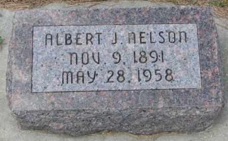 NELSON, ALBERT J. - Cedar County, Nebraska | ALBERT J. NELSON - Nebraska Gravestone Photos