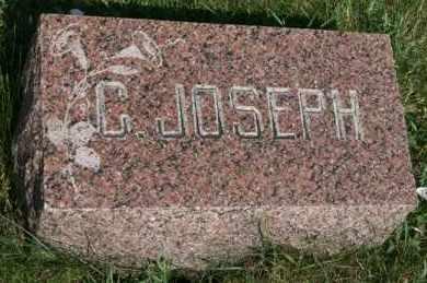 NELSON, C. JOSEPH - Cedar County, Nebraska | C. JOSEPH NELSON - Nebraska Gravestone Photos