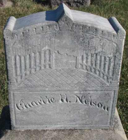 NELSON, CHARLIE H. - Cedar County, Nebraska | CHARLIE H. NELSON - Nebraska Gravestone Photos