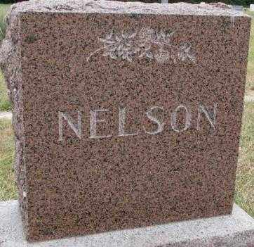 NELSON, PLOT - Cedar County, Nebraska | PLOT NELSON - Nebraska Gravestone Photos